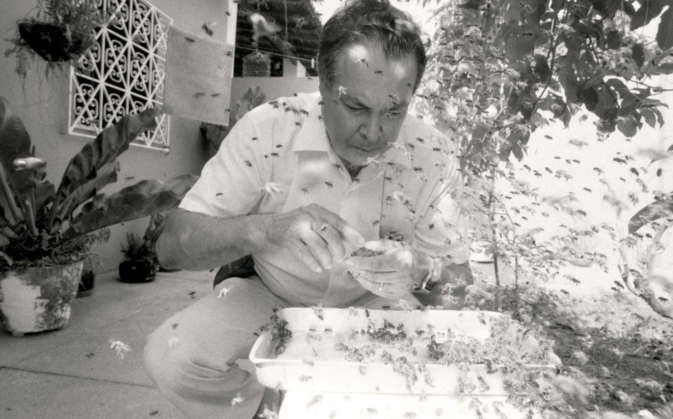 Warwick Kerr, um dos pioneiros da pesquisa genética no Brasil